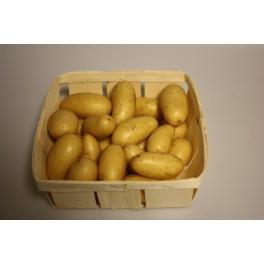 Amadine aardappel