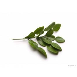Citroenblad