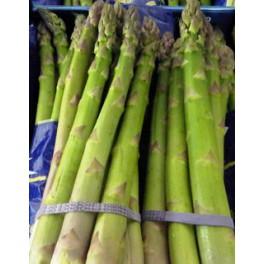 Asp.groen 500 gr