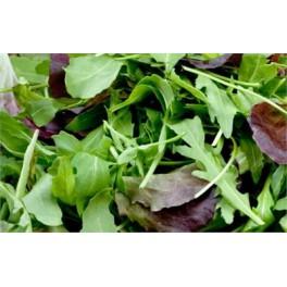 Baby leaf/Mesclun per 125 gram